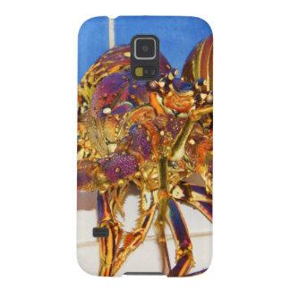 Stenhummer Galaxy S5 Fodral
