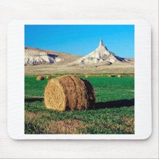 Stenlampglas Nebraska Musmatta