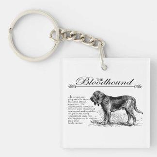 Stil för spårhundvintagesagobok