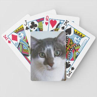 Stilig grå färg- och vitkatt spelkort