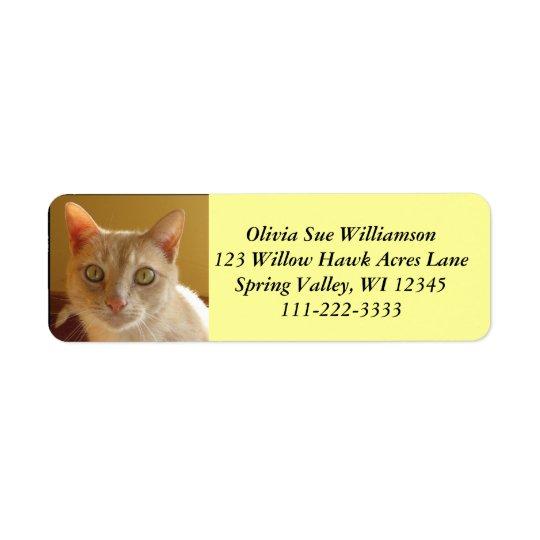 Stilig orange katt #2 returadress etikett