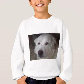 Stilig underbara Pyrenees hund T-shirt