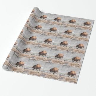 Stilig ung Bison eller buffel Presentpapper