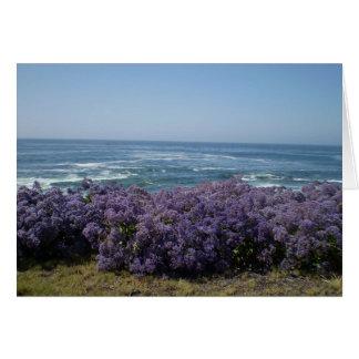 Stilla hav och lila blommor OBS kort