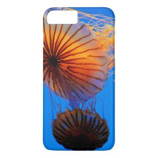 Stillahavs- havsnässla (chrysaoraen Fuscescens)
