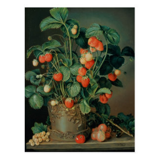 Stilleben med jordgubbar vykort