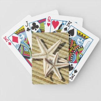 Stjärnafisk som leker kort spelkort