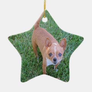 Stjärnaprydnad: Chihuahua -- eller ditt husdjur Julgransprydnad Keramik