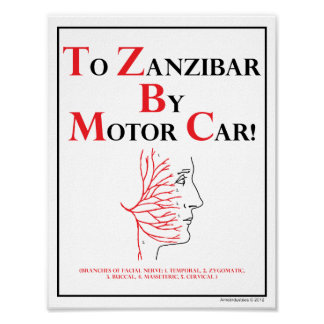 Stöd för minnet: Till Zanzibar med den motoriska Poster
