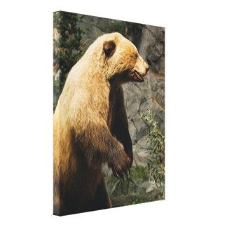 Stolt björn canvastryck