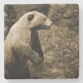 Stolt björn underlägg sten