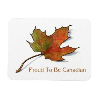 Stolt kanadensare: Lönnlövet i färg ritar: Konst Magnet