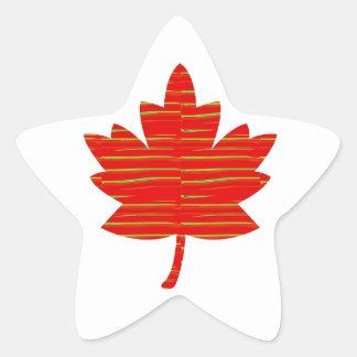 Stolt kanadensisk LÖNNLÖV: DRIFTIGT rött på silke