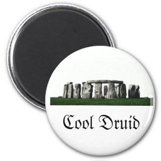 Stonehenge - kall Druid Magnet