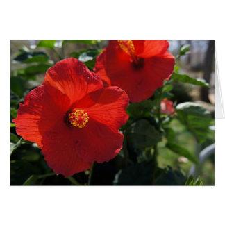 Stor blomma Notecard Hälsningskort