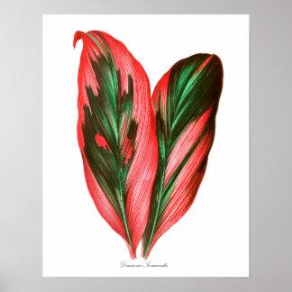 Stor botanisk konst för dekor för lövtryck #3 poster