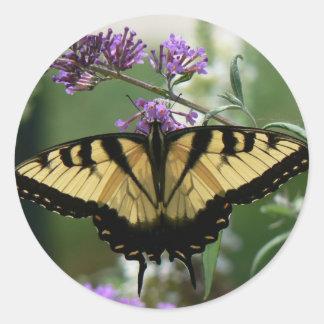 Stor glansig klistermärke för härlig fjärilsrunda