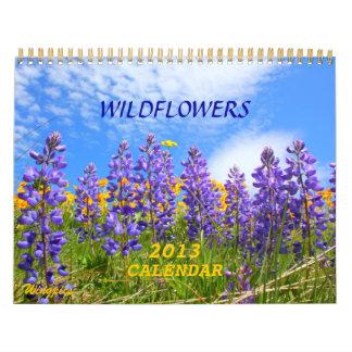 Stor kalender för himmellandvildblommar 2013