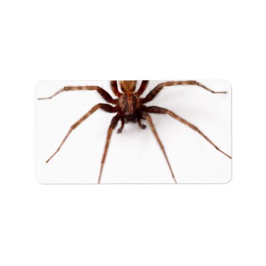 Stor läskig spindel adressetikett