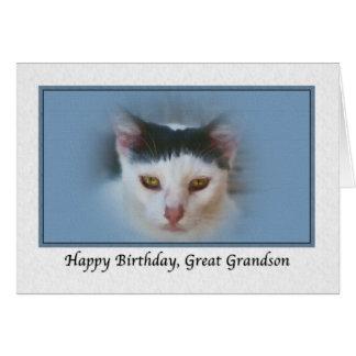 Stor- sonson födelsedagkort med katten hälsningskort