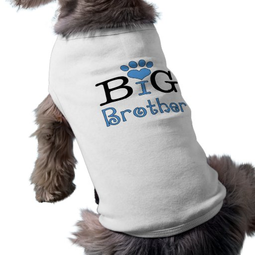Storebror - hund tröja