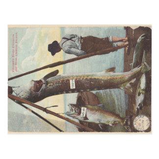 Stören & laxen fångar vykortet vykort