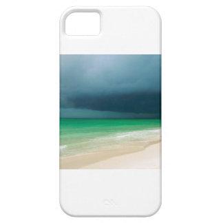 Storm på stranden iPhone 5 skal