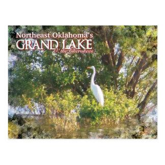 Storslagen egret för sjöOklahoma vykort