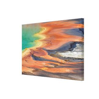 Storslagen Prismatic vårRunoff Canvastryck