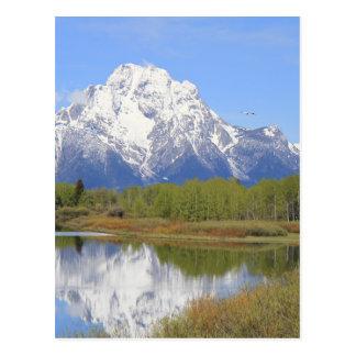 Storslagen Teton nationalpark för Mt. Moran Vykort