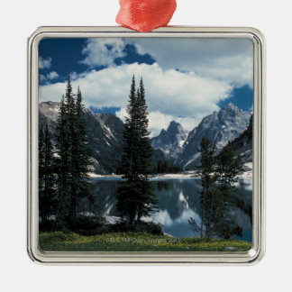 Storslagen Teton nationalpark, Wyoming Julgransprydnad Metall