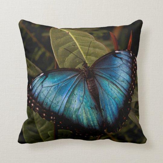 Stort härligt, blåttfjäril kudde