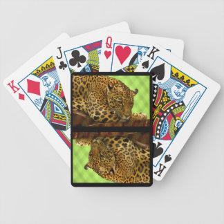 Stort koppla av för vild katt spelkort