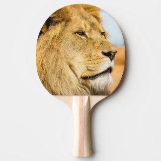 Stort lejont tittar långväga pingisracket