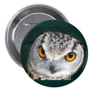 Stort öga uggla mellanstor knapp rund 7.6 cm