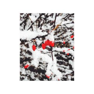 Sträckta röda bär för kanvastryck