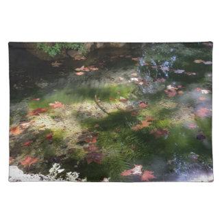 strålar och löv på vatten bordstablett