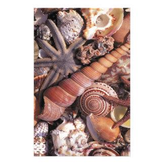 Strand för snäckor för naturvatten blandad brevpapper