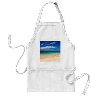 Strand Makena Maui Hawaii Förkläde