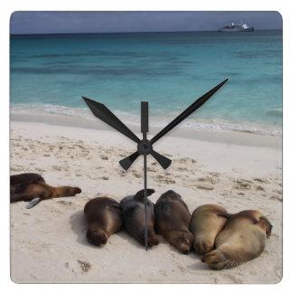 Stranden tar tid på fyrkantig klocka