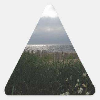Strandstorm Triangelformat Klistermärke