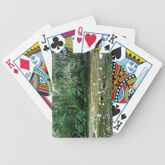 Streamin på av cykeln som leker kort spelkort