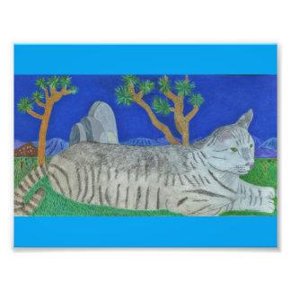 Stripey katt på det Joshua träd av Julia Hanna Fototryck