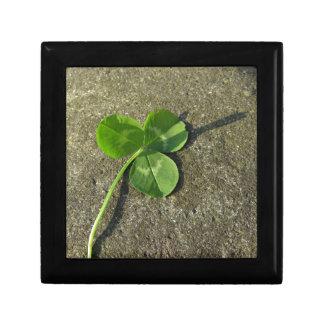 Sts Patrick dagbakgrund med klövershamrocken Minnesask