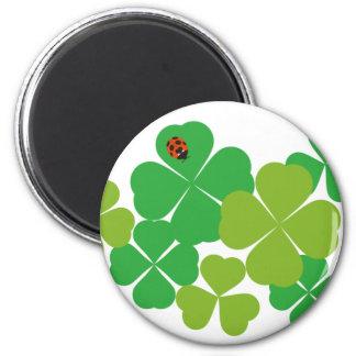 Sts Patrick dagklöver & nyckelpiga Magnet