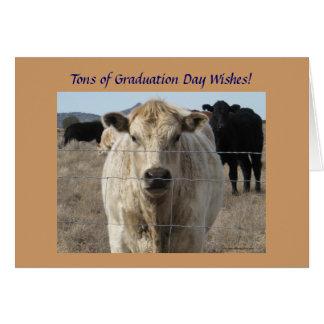 Studenten önskar - den gulliga vitkon - ranchen el hälsningskort