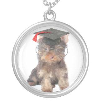 StudentenYorkshire Terrier Silverpläterat Halsband