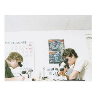 Studenter med mikroskop vykort