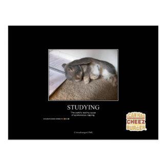 Studera Vykort