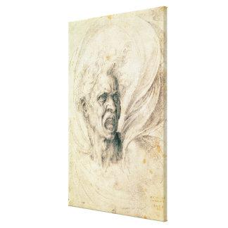 Studie av ropa för man canvasdukar med gallerikvalitet